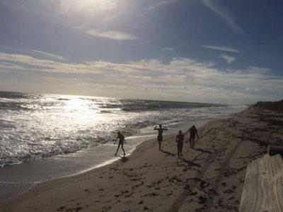 Strandlauf mit dem Cross-Country